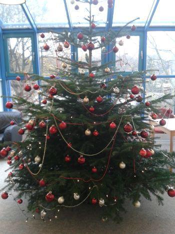 Joseph-DuMont-Berufskolleg - Frohe Weihnachten und ein glückliches ...